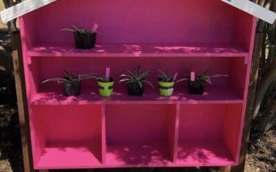 New Plant Sharing Shelves