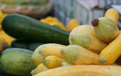 Gleaning: Collecting or  Donating Excess Produce