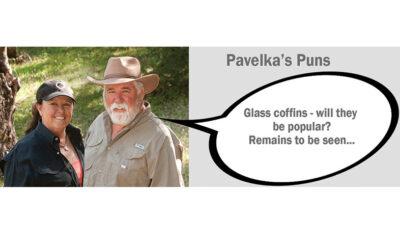 Pavelka's Pun Nov 20