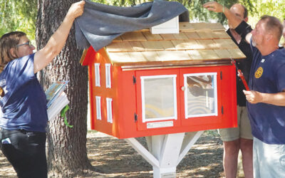 """New """"Little Library"""" Now Installed"""