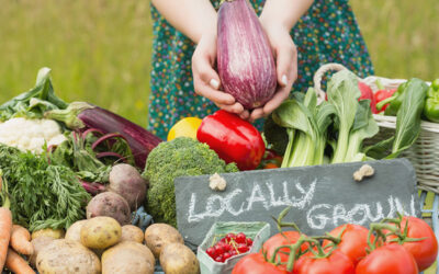 Produce Market Day Re-Opening